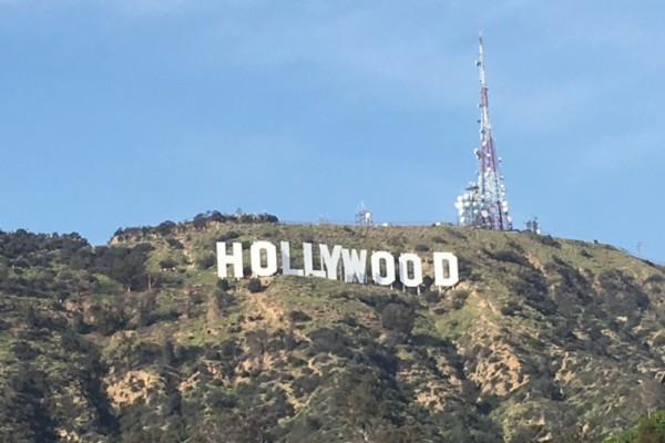 LAへ!!海外研修行ってきました!